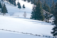 Winterlandschaft in den Bergen Stockbilder