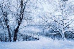 Winterlandschaft in den kalten Tönen - bereifte Winterbäume und alte Brücke im Winterwald im bewölkten kalten Winterwetter Stockfotos