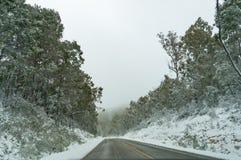 Winterlandschaft der Landschaftsstraße umfasst mit Schnee Lizenzfreie Stockfotografie