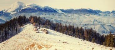 Winterlandschaft der schneebedeckten Bäume Stockfoto