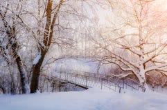 Winterlandschaft in der Weinlese tont - eisige Bäume des Winters und alte Brücke des verschneiten Winters im Winterpark Lizenzfreies Stockfoto