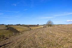 Winterlandschaft der Yorkshire-Wolds Lizenzfreie Stockbilder
