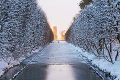 Winterlandschaft des schneebedeckten Parks in Gdansk Lizenzfreies Stockfoto