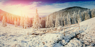 Winterlandschaft, die durch Sonnenlicht glüht Drastische winterliche Szene Auto lizenzfreie stockfotos
