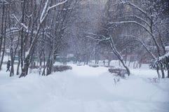 Winterlandschaft in einem Park Lizenzfreies Stockfoto
