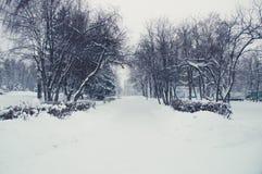 Winterlandschaft in einem Park Stockfotografie