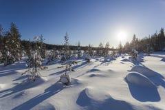 Winterlandschaft an einem sonnigen Tag Stockbild