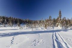 Winterlandschaft an einem sonnigen Tag Lizenzfreies Stockfoto