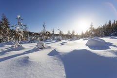 Winterlandschaft an einem sonnigen Tag Stockfotos