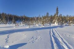 Winterlandschaft an einem sonnigen Tag Lizenzfreies Stockbild