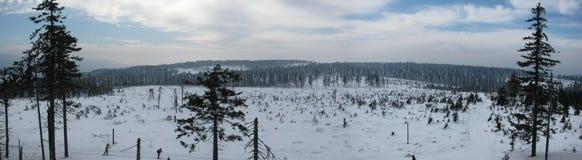 Winterlandschaft entlang den Bahnen für Skilanglauf stockfotografie