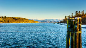 Winterlandschaft entlang Fraser River nahe der historischen Stadt des Forts Langley Stockbilder