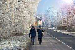 Winterlandschaft - gehen Sie durch die Winterlandschaft lizenzfreie stockfotos
