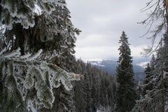 Winterlandschaft hoch in den Bergen stockfotos
