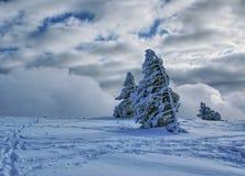 Winterlandschaft I Stockfoto