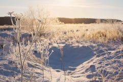 Winterlandschaft im Schnee Stockbilder