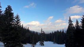 Winterlandschaft im schneebedeckten Park stock footage