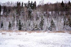 Winterlandschaft in Lettland lizenzfreie stockfotografie