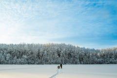 Winterlandschaft mit blauem Himmel Lizenzfreie Stockbilder
