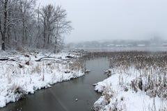 Winterlandschaft mit Blizzard Stockfoto