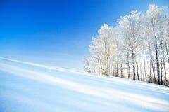 Winterlandschaft a mit dem blauen Himmel, einem Feld und dem Wald Stockfotografie