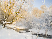 Winterlandschaft mit dem Fluss Stockfotos