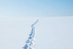 Winterlandschaft mit den Abdrücken, die zum Horizont entlang dem Schneefeld laufen Lizenzfreie Stockfotografie
