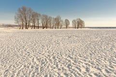 Winterlandschaft mit den Hügeln bedeckt mit Schnee Stockfotografie