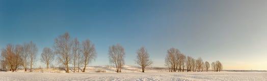 Winterlandschaft mit den Hügeln bedeckt mit Schnee Stockbild