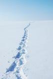 Winterlandschaft mit den menschlichen Abdrücken, die zum Horizont laufen Lizenzfreie Stockfotos