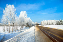 Winterlandschaft mit der Straße der Wald und der blaue Himmel Stockfotos