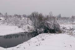 Winterlandschaft mit einem pond2 Stockfotografie