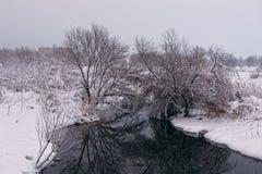 Winterlandschaft mit einem pond3 Lizenzfreie Stockfotografie