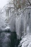 Winterlandschaft mit einem pond4 Stockbilder