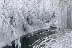 Winterlandschaft mit einem pond6 Lizenzfreie Stockfotos