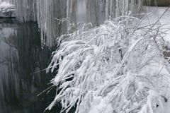 Winterlandschaft mit einem pond5 Stockbild