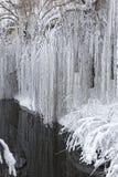 Winterlandschaft mit einem pond7 Lizenzfreie Stockfotos