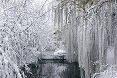 Winterlandschaft mit einem pond8 Lizenzfreie Stockfotos