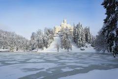 Winterlandschaft mit einem Schloss stockfotografie