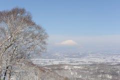 Winterlandschaft mit einem Vulkan Stockbilder