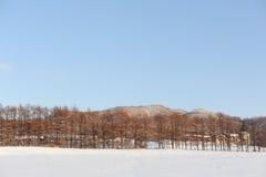 Winterlandschaft mit einem Vulkan Stockfotografie