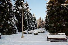 Winterlandschaft mit einer Bank, die mit Schnee mitten in Winter bedeckt wurde, bereifte Bäume und Straßenlaternen Straßen von St Stockbilder