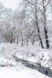 Winterlandschaft mit Fluss Stockbilder