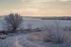 Winterlandschaft mit gefrorenem Fluss und Wald im Frost lizenzfreie stockbilder