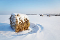 Winterlandschaft mit klarem blauem Himmel und Heu rollt auf schneebedecktem Feld Stockbilder