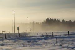 Winterlandschaft mit Nebel und Bäumen lizenzfreies stockfoto