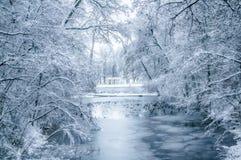 Winterlandschaft mit Schnee bedeckte Bäume und Enten im See Stockfotografie