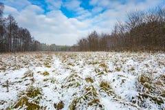 Winterlandschaft mit Schnee bedeckte Landschaft Stockbilder