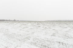 Winterlandschaft mit Schnee bedeckte Landschaft Lizenzfreie Stockbilder
