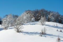 Winterlandschaft mit Schnee Campo Felice, Italien stockfotografie